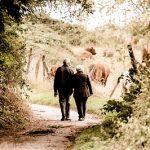 Около 1,3 милиона пенсионери ще получат добавка към пенсиите си за Великден
